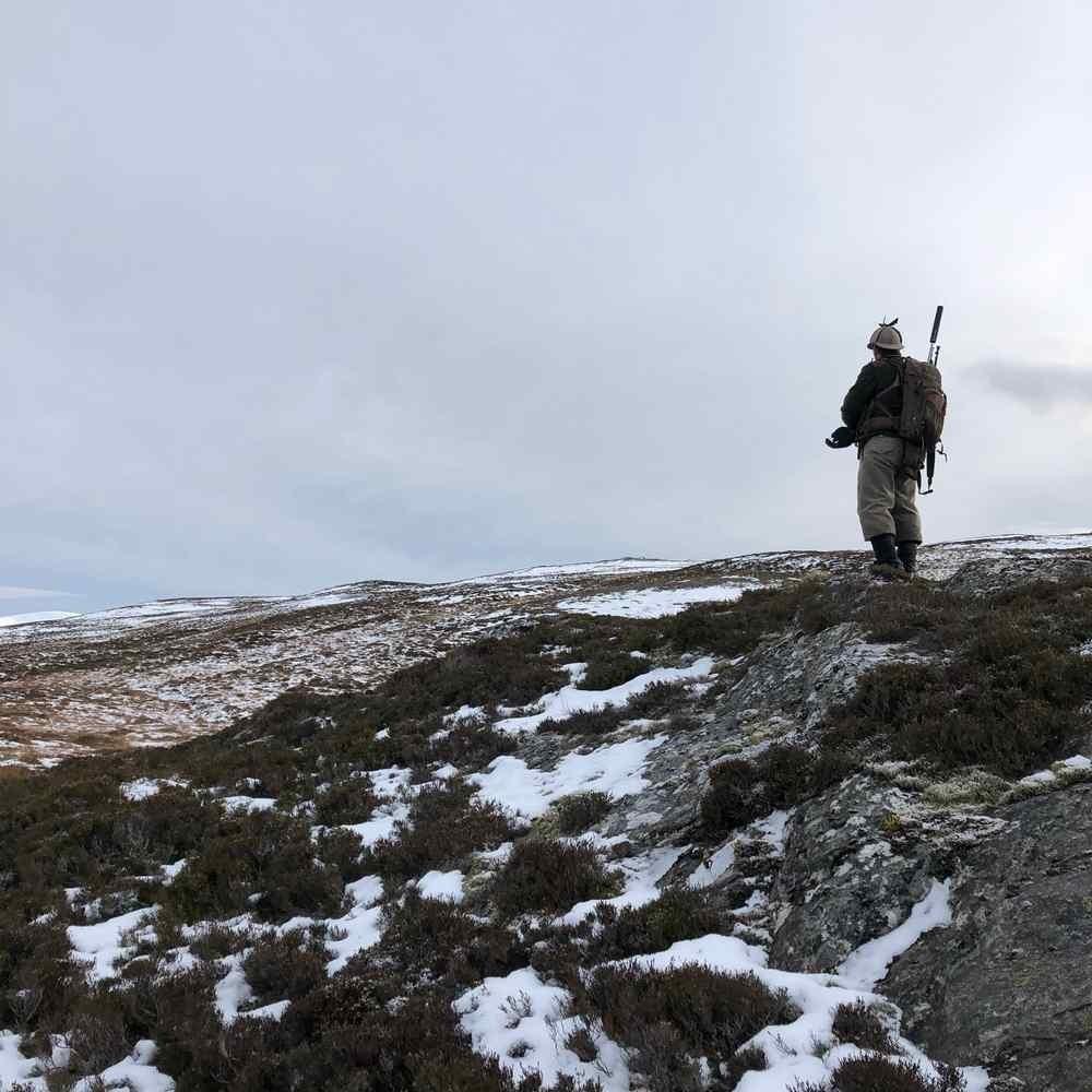 Highland Stalking Part 2